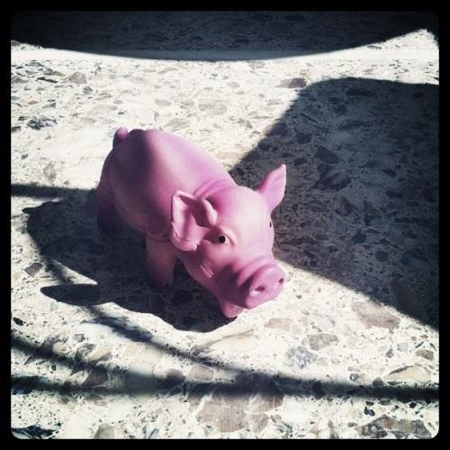 Miss Piggy Pink Fashion